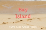 Bay Island Siesta Key For Sale
