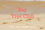 Bay Tree Club Siesta Key For Sale