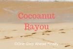 Cocoanut Bayou Siesta Key For Sale