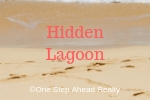 Hidden Lagoon Siesta Key For Sale