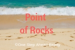Point of Rocks Siesta Key For Sale