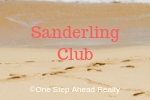 Sanderling Club Siesta Key For Sale