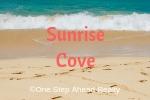 Sunrise Cove Siesta Key For Sale