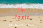 The Pointe Siesta Key For Sale