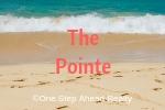 The Pointe Siesta Key For Sale