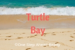 Turtle Bay Siesta Key For Sale