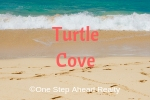 Turtle Cove Siesta Key For Sale