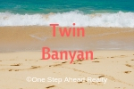 Twin Banyan Siesta Key For Sale