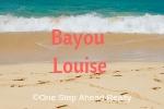 Bayou Louise Siesta Key For Sale