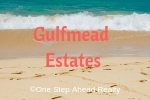 Gulfmead Estates Siesta Key For Sale