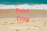 Point Crisp Siesta Key For Sale