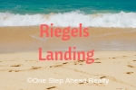 Riegels Landing Siesta Key For Sale