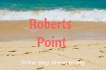 Roberts Point Siesta Key For Sale