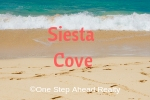 Siesta Cove Siesta Key For Sale