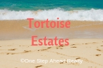 Tortoise Estates Siesta Key For Sale